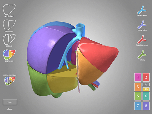 Vme Projects Surgical Anatomy Of The Liver School Of Medicine